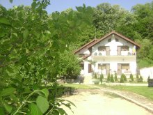 Accommodation Valea Ravensca, Casa Natura Guesthouse