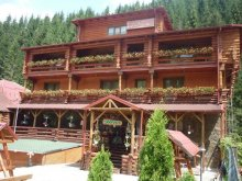 Bed and breakfast Valea lui Dan, Casa Wiarusti Guesthouse