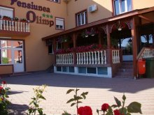 Accommodation Ghioroc, Olimp B&B