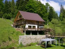 Chalet Ginta, Cota 1000 Chalet