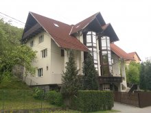 Accommodation Gurghiu, Casa Dan B&B