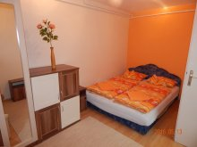 Accommodation Somogy county, Anna Apartment