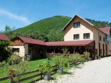 Bed and breakfast Sibiu county, Domnescu Guesthouse
