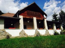 Accommodation Poiana (Negri), Fintu Guesthouse