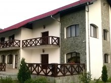 Accommodation Bașcov, Natura Green Guesthouse