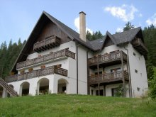 Bed & breakfast Recia-Verbia, Bucovina Lodge Guesthouse