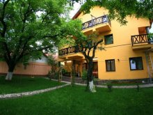 Accommodation Gutinaș, Elena Guesthouse
