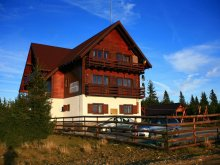 Accommodation Valea Cucii, La Cristian Chalet