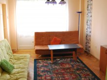 Apartament Hirean, Apartament Palmyra