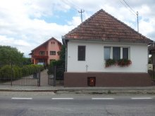Accommodation Hodăi-Boian, Andrey Guesthouse
