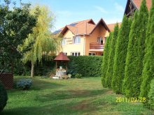 Bed and breakfast Băile Selters, Laguna Guesthouse
