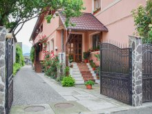 Discounted Package Braşov county, Renata Pension
