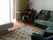 Apartament Petelei, Apartament Salcâm