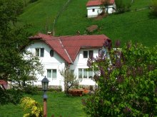 Bed and breakfast Valea Mare-Bratia, Bangala Elena Guesthouse