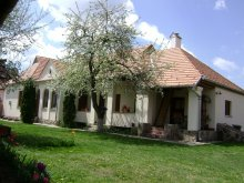 Guesthouse Tescani, Ajnád Guesthouse