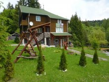 Chalet Gheorgheni, Cserny Csaba Guesthouse