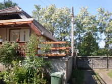 Bed and breakfast Răchitișu, Fehér Akác Guesthouse