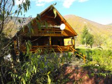 Accommodation Valea Bistrei, Pin Alpin Chalet