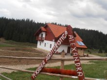 Accommodation Dealu Capsei, Alexandra Agrotourism Guesthouse