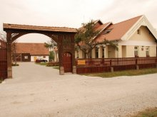 Accommodation Borzont, Borsika Guesthouse