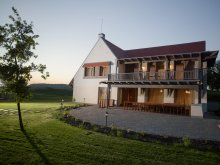 Bed and breakfast Sâncraiu, Orgona Guesthouse