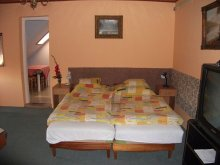 Accommodation Szarvas, Csilla Guesthouse