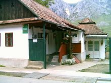 Accommodation Dumbrava (Unirea), Gizella Guesthouse