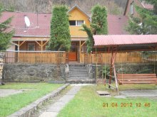 Accommodation Băile Homorod, Benedek Guesthouse