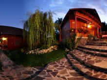 Bed & breakfast Băile Selters, Olga Guesthouse