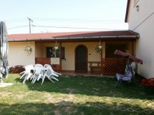 Guesthouse Gyula, Andrea Guesthouse