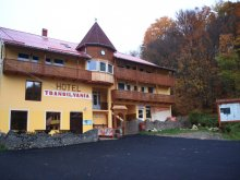 Accommodation Bixad, Villa Transilvania
