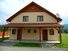 Apartment Cristuru Secuiesc, Loksi Guesthouse