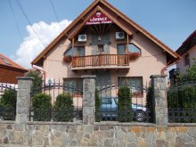 Bed and breakfast Pinticu, Lőrincz Guesthouse