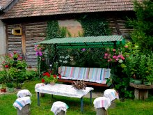 Guesthouse Sărata, Stork's Nest Guesthouse