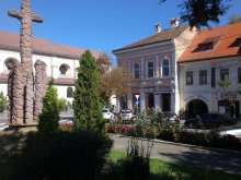 Bed & breakfast Cristuru Secuiesc, Korona Guesthouse