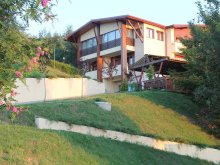 Bed & breakfast Sava, La Mesteceni Guesthouse