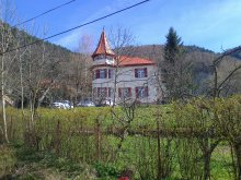 Bed & breakfast Hăghig, Castel Iezer B&B