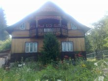 Bed and breakfast Miron Costin, Poiana Mărului Guesthouse