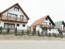 Accommodation Răcăteșu, SuperSki Vilas
