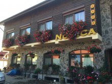 Bed & breakfast Crăciunelu de Sus, Pension Norica