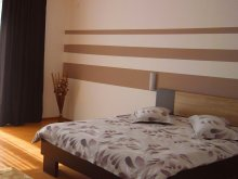 Apartament Movila (Sălcioara), Apartament Dan