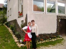 Accommodation Dealu Mare, Monika Guesthouse