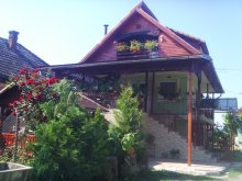 Bed and breakfast Agrișu de Jos, Enikő Guesthouse