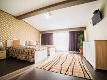 Accommodation Poiana (Negri), Sophia Guesthouse
