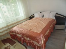 Accommodation Dorohoi, Lary Apartment