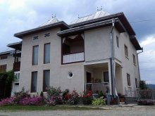 Vacation home Poiana (Flămânzi), Sandina B&B