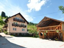 Bed & breakfast Hulubești, Moecel Vila