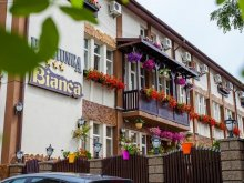 Bed & breakfast Cuza Vodă, Bianca Guesthouse