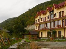 Accommodation Valea Ravensca, Delfinul Chalet