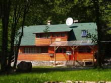 Accommodation Izvoare, Medvetalp Chalet